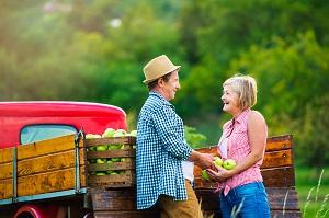 Obst und Gemüse Transport