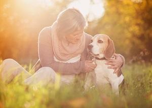 Hund und Frau im Abendlicht